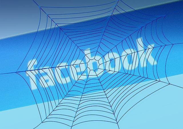 Facebook telaraña